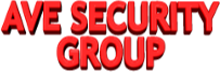 Ave Security Group - protectie paza